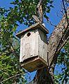 Birdhouse 2.jpg