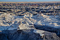 Bisti-De-Na-Zin Wilderness (9443389894).jpg