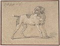 Black and White Dog, Head Turned to the Left MET DP806742.jpg