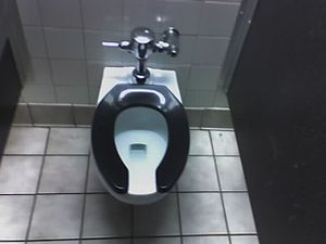 photo of toilet seat, portable potty