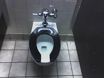 English: photo of toilet seat