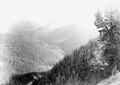Blick auf die Münstertaler Alpen und das Ferromassiv - CH-BAR - 3239894.tif
