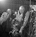 Bloemen in Aalsmeer, Bestanddeelnr 901-3322.jpg