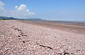 Blue Anchor beach looking west.jpg