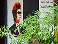 Bob Dylan Mural with Foliage - Kampot - Cambodia (48520373382).jpg