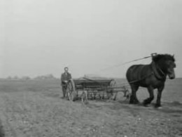 Bestand:Boeren uit het rampgebied vinden nieuwe toekomst in Noordoostpolder Weeknummer 54-13 - Open Beelden - 28801.ogv