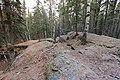 Bonsai Boulders Kananaskis Alberta Canada (16672936219).jpg