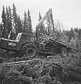 Bosbewerking, arbeiders, boomstammen, machines, werktuigen, aanhangers, voertuig, Bestanddeelnr 253-5348.jpg
