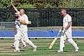 Botany Bay CC v Rosaneri CC at Botany Bay, Enfield, London 34.jpg