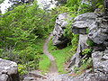 Boulders Along Rainbow Falls Trail.JPG
