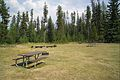 Bowman Lake Picnic Area (4497719629).jpg