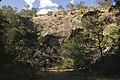 Bowral NSW 2576, Australia - panoramio (121).jpg