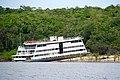 Brazil-00138 - Amazon Ambassador (48961559872).jpg
