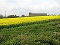 Brick Kiln Farm in April - geograph.org.uk - 1275979.jpg