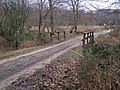 Bridge over Blackensford Brook, Burley Outer Rails Inclosure, New Forest - geograph.org.uk - 341653.jpg