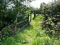 Bridleway near Leigh - geograph.org.uk - 1450957.jpg