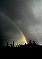 Brilliance - Flickr - eye of einstein.jpg