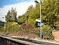 Brinnington Station - geograph.org.uk - 1507840.jpg