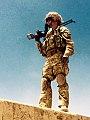 British Peshmerga (18059676503).jpg