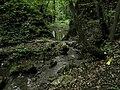 Bubovice-Srbsko - panoramio (98).jpg