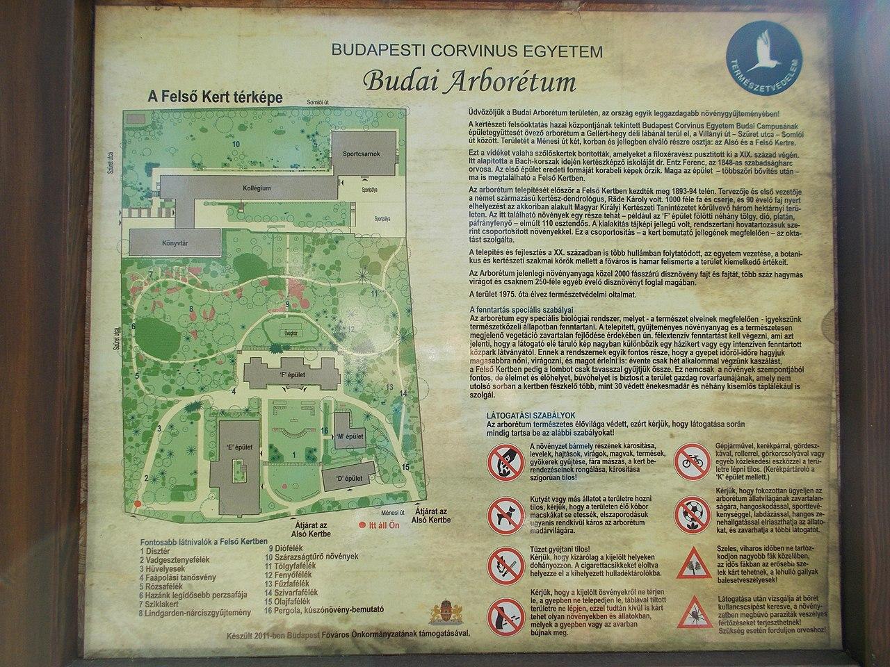 File Budai Arboretum Felso Kert Ismerteto Budapest Xi