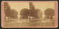 Bull Street, Savannah, Ga. (and Johnson Square), from Robert N. Dennis collection of stereoscopic views.png