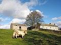 Bull enclosure at East Briscoe, North Riding of Yorkshire - geograph-4232130.jpg