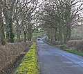 Bumble Bee Lane towards High Cross - geograph.org.uk - 663910.jpg