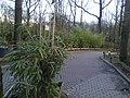 Burgers' zoo in Arnhem 2013 expositie 40.jpg