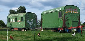 Busenbach Freilandhaltung-Hühner.jpg