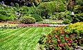 Butchart Gardens - Victoria, British Columbia (29236421055).jpg