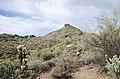 Butcher Jones Trail to Pinter's Point Loop, Tonto National Park, Saguaro Lake, Ft. McDowell, AZ - panoramio (77).jpg