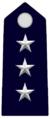 CAP.GendarmeriaPontificia.png