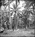 CH-NB - Portugal, San Thomé (São Tomé und Príncipe)- Menschen - Annemarie Schwarzenbach - SLA-Schwarzenbach-A-5-25-163.jpg
