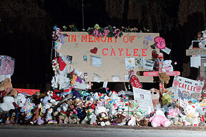 A Portion of the memorial for Caylee Anthony n...