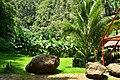 CUBA - panoramio (48).jpg