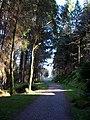 Callander to Strathyre Cycleway - geograph.org.uk - 394803.jpg