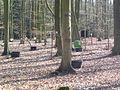 Calvörde, Isernhagen, Forschungsfeld II 03-2012.JPG