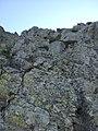 Camí a la Cresta dels Castellets, Parc Natural del Montseny (desembre 2011) - panoramio.jpg