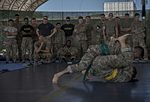 Camp Lemonnier Combatives Tournament 170113-F-QX786-0005.jpg