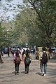 Campus Road - Jadavpur University - Kolkata 2015-01-08 2406.JPG