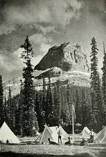 Canadian Alpine Journal I, 1, 009.jpg