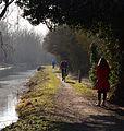Canal towpath, Woolhampton, Berkshire (geograph 4377219).jpg