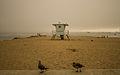 Capitola Beach (15158226193).jpg