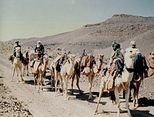 بحث حول الجزائر 220px-Caravane_de_M%