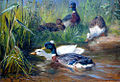 Carl Jutz Enten im Teich.jpg