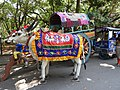 Cart-3-cubbon park-bangalore-India.jpg