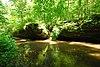 Carver-Roehl Woods.jpg