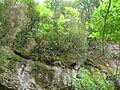 Cascate di Diosilla.JPG