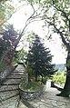 Castello di Canossa 28.jpg